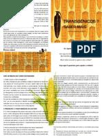 Saber mais sobre Transgenicos.pdf