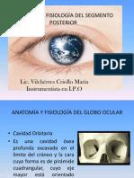 Diapositivas de Anatomia Ocular 2013