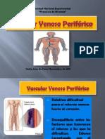 vascularvenosoperiferico1-111121080603-phpapp01