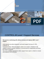 Control M Administration and Monitoring Services