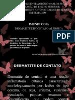 dermatitedecontato-121120053619-phpapp02