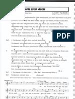 verdammt ich lieb dich - matthias reim.pdf