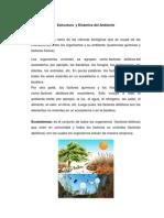 Estructura  y Dinámica del Ambiente
