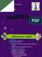 Inflamación Aguda
