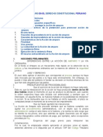 Accion de Amparo-CONST REC