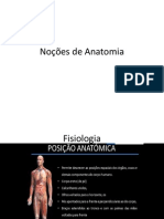 Noções de Anatomia