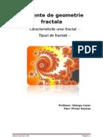 elemente-geometrie-fractala