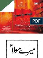 Meray Maula - halat Imam-e-Zamana (atfs)