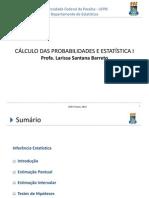 Inferênciacp2013