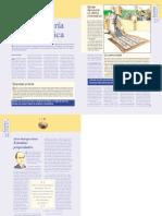 Pirateria Informatica PDF