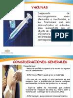 Estrategia Sanitaria de Inmunizaciones.