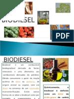 Biodiesel a.e.es.