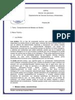 Informe Práctica 9 Metales y Ácidos