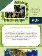 Importancia y características de la Biodiversidad en México