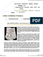 Chinese Fossils fake dinosaur fossils