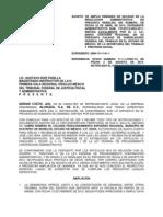 ALUSUIZA 2890 AMPLIACION-1