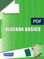 93-46409471.H Algebra Basics AUS