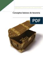 CPX ConceptosBasicosTesoreria Cas