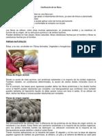 Clasificación de la fibras
