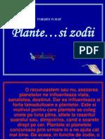 Plante Zodiacale