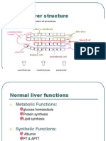 Liver Function Tests and Enzymes