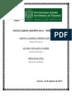 METODOLOGIA IMPRIMIR