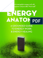 Energy Anatomy Pete Michaud