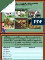 EVIDENCIAS DE EVOLUCIÓN.pptx