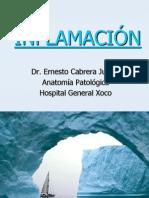 03 INFLAMACIÓN AGUDA Y CRÓNICA RES 2011