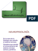 C. NEUROFISIOLOGÍA