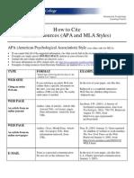 APA Internet Articles.