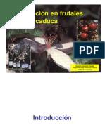 Polinización en frutales de hoja caduca
