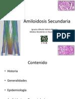 Clase Amiloidosis Secundaria