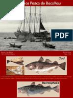 A Heróica Pesca do Bacalhau