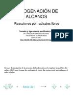 HALOGENACIÓN DE ALCANOSbis