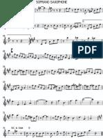 CIRCUNLOQUIO Soprano - Soprano Saxophone_0002