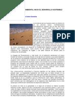 Desarrollo Sostenible y Medio Ambiente