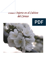 Botanica - Arboricultura - Poda e Injerto en El Cultivo Del Cerezo