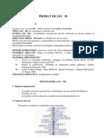 Proiect de lectie Relatii Metrice Vii