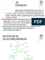 90GLICOLIZA -ŞI GLUCONEOGENEZA