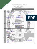 dmc-tt-sem2-year1-cvswk2-20130713 (1)