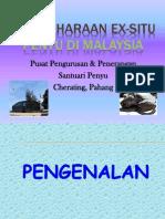 SCE 3107 Praktikal 3_pemuliharaan Ex-situ