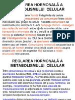 97 REGLAREA HORMONAL€Ã A METABOLISMULU I  CELULAR
