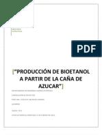 Formulacion de Proyectos - Produccion de Bioetanol (1)