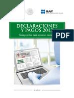 Declaraciones y Pagos Sat 2013