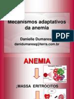 AULA Mecanismos Apaptativos Da Anemia2