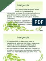 IV Unidad Inteligencia