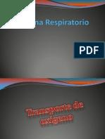 Transporte de Gases, Respiracion Celular y Ph (Corregida)
