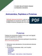 2 Intro Aminoacidos Proteinas 2011a