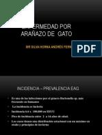 ENFERMEDAD ARAÑAZO DE GATO